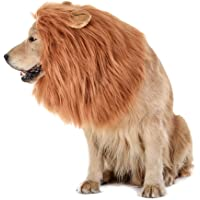 Tomsenn Lion Mane for Dogs