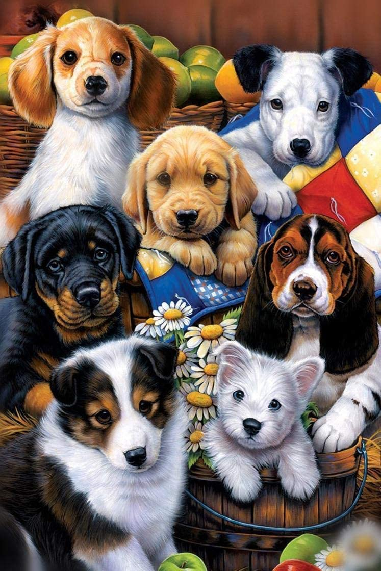 Diy Diamond Painting Art Kits For Adults Full Square Drill Dog Paint By Num Y1X1