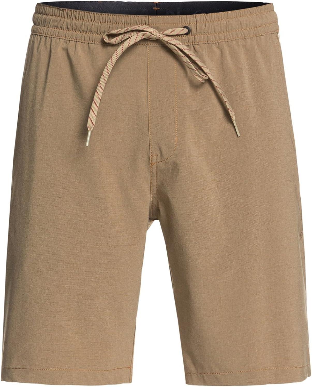 Quiksilver Men's SUVA Amphibian 19 Walkshort Boardshort Shorts