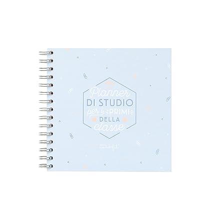 Mr. Wonderful woa09062it Planner para lo Studio: Amazon.es ...