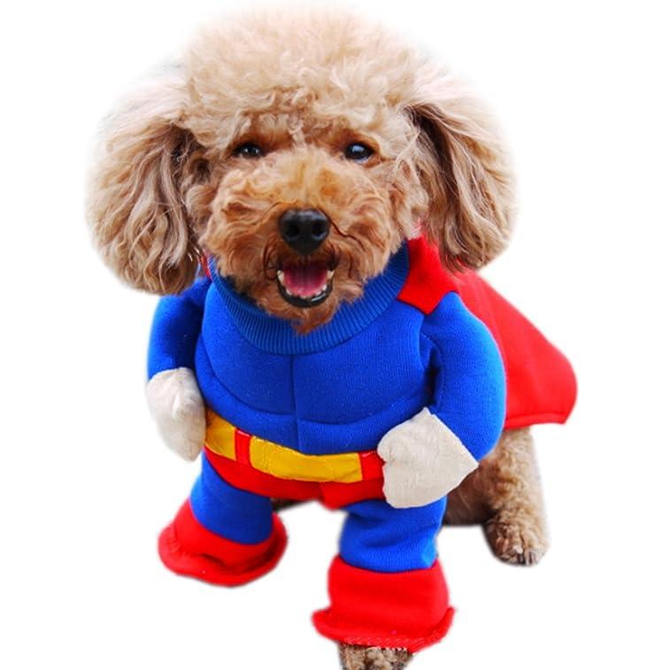 Alfie Pet by Petoga Couture - Landry Superman Costume - Size: XL