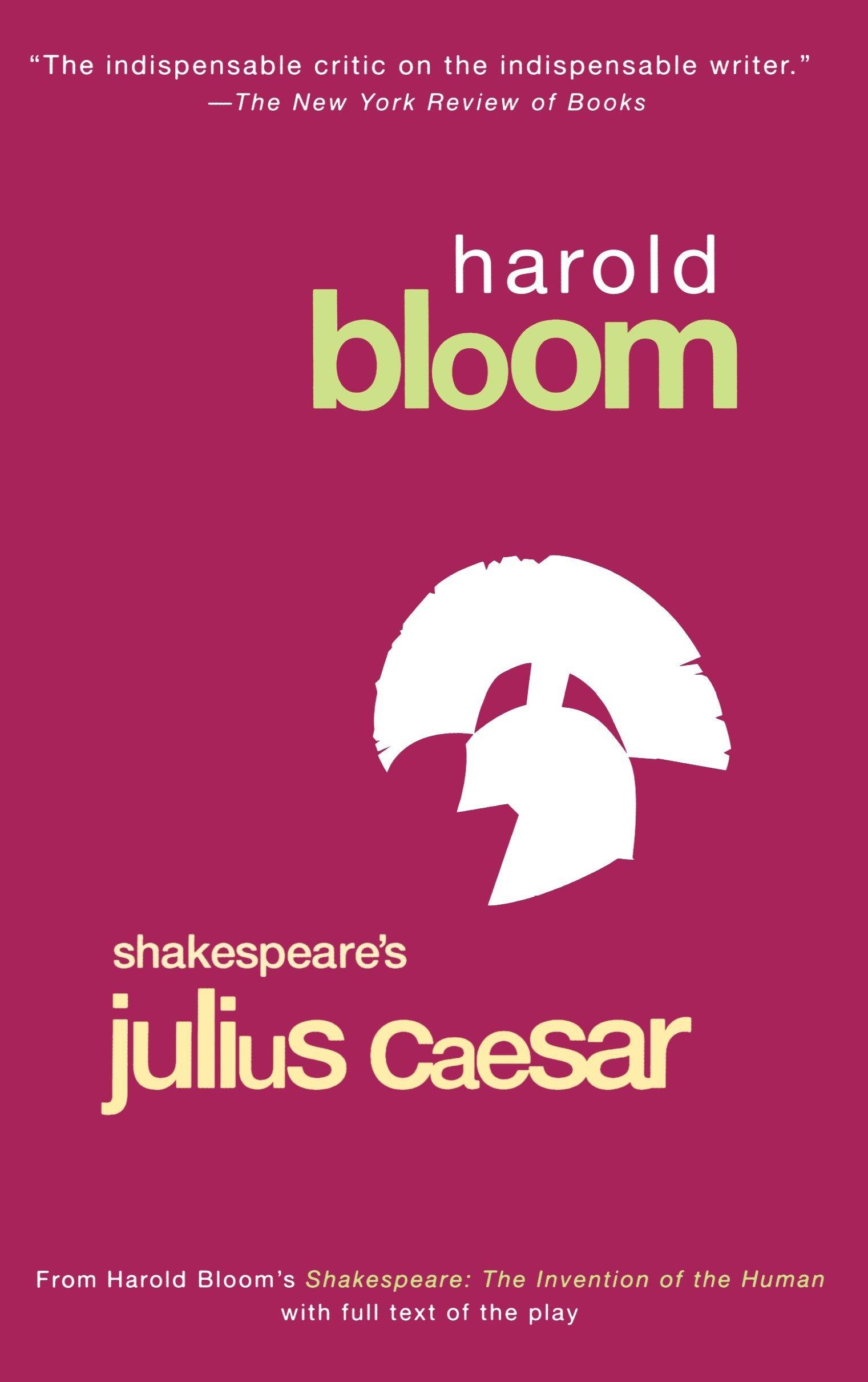 Download Shakespeare's Julius Caesar (Bloom's Modern Critical Interpretations) ebook