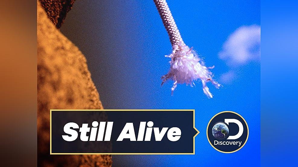 Still Alive - Season 1