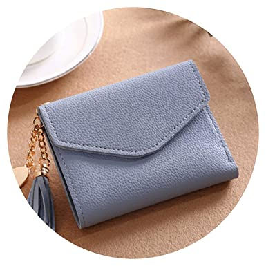 Amazon.com: Super Hot Bag Moda sólido borla mujer cartera ...