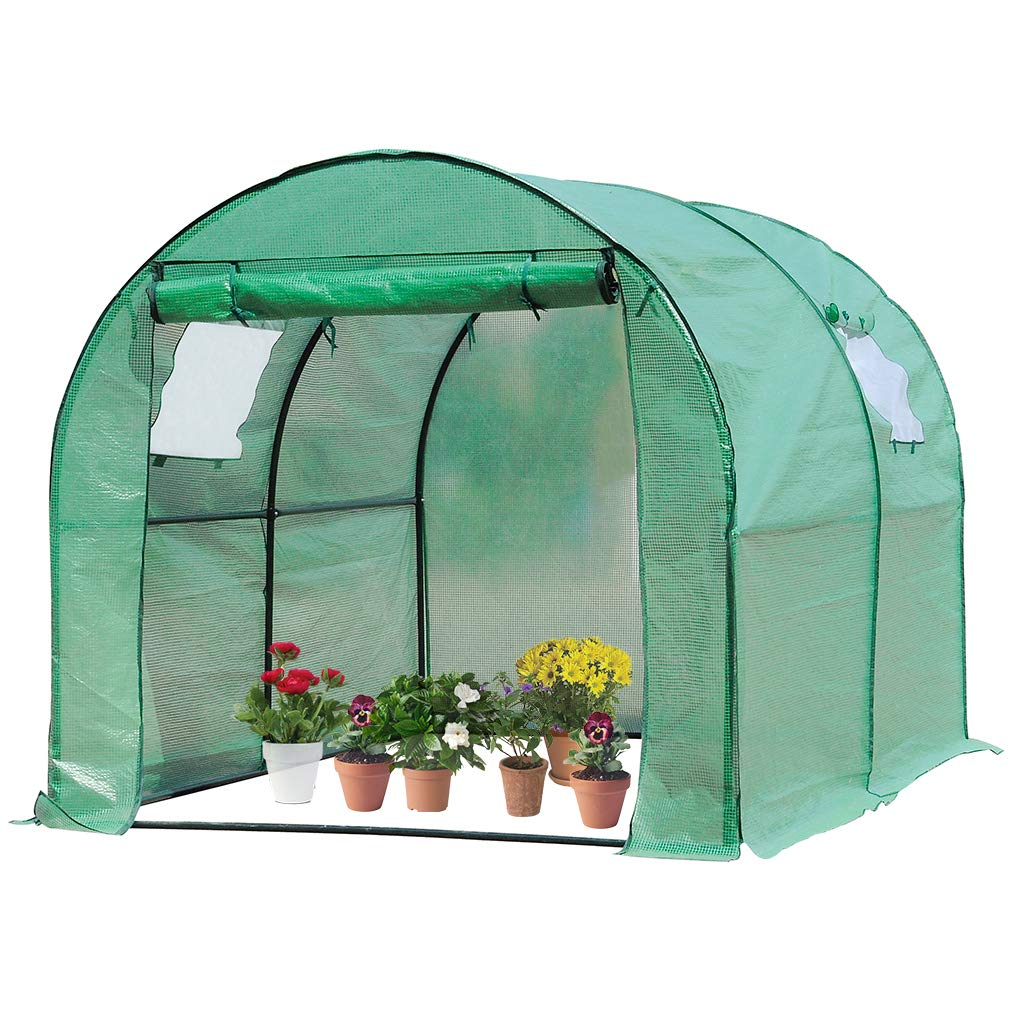 BestMassage Portable Greenhouse (L9.83'xW6.42'xH6.33') Indoor Outdoor Large Plant Shelves Tomato Herb Canopy Winter Walk-in Green House for Patio by BestMassage (Image #1)