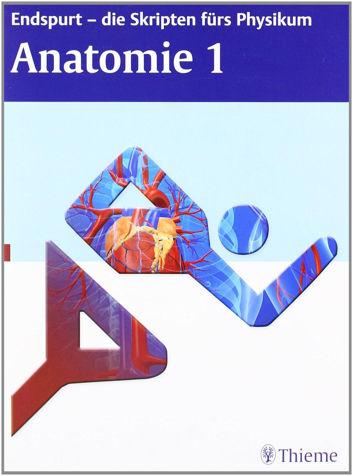 Endspurt - die Skripten fürs Physikum: Anatomie 1