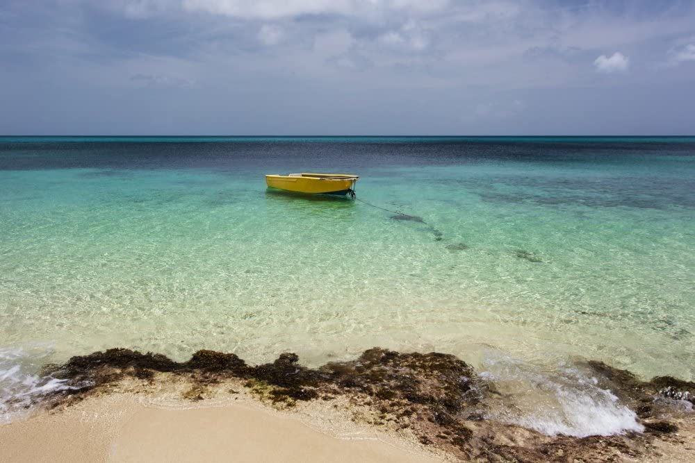 A lone boat in the turquoise water off a tropical island Frederiksted St Croix Virgin Islands United States of America Poster Print by Jenna Szerlag Design Pics (17 x 11)