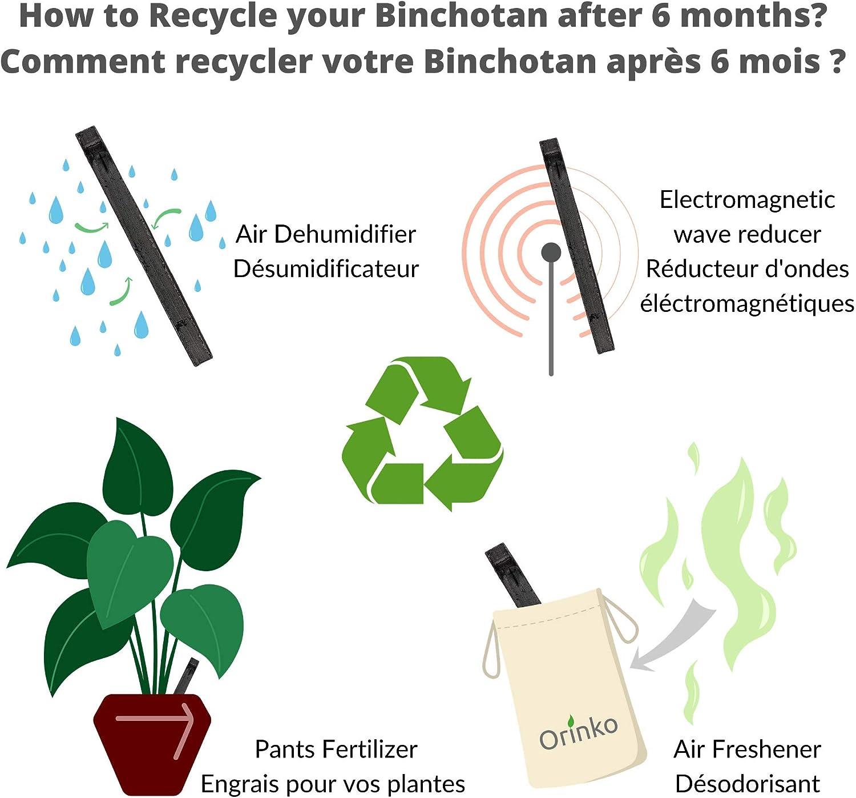 Genuine Japanese Traditional Active Charcoal Binchotan for Water Purification in Carafe Binchotan Organic Kishu 5X Satisfaction or Refund Purify Your Water for 1 Year