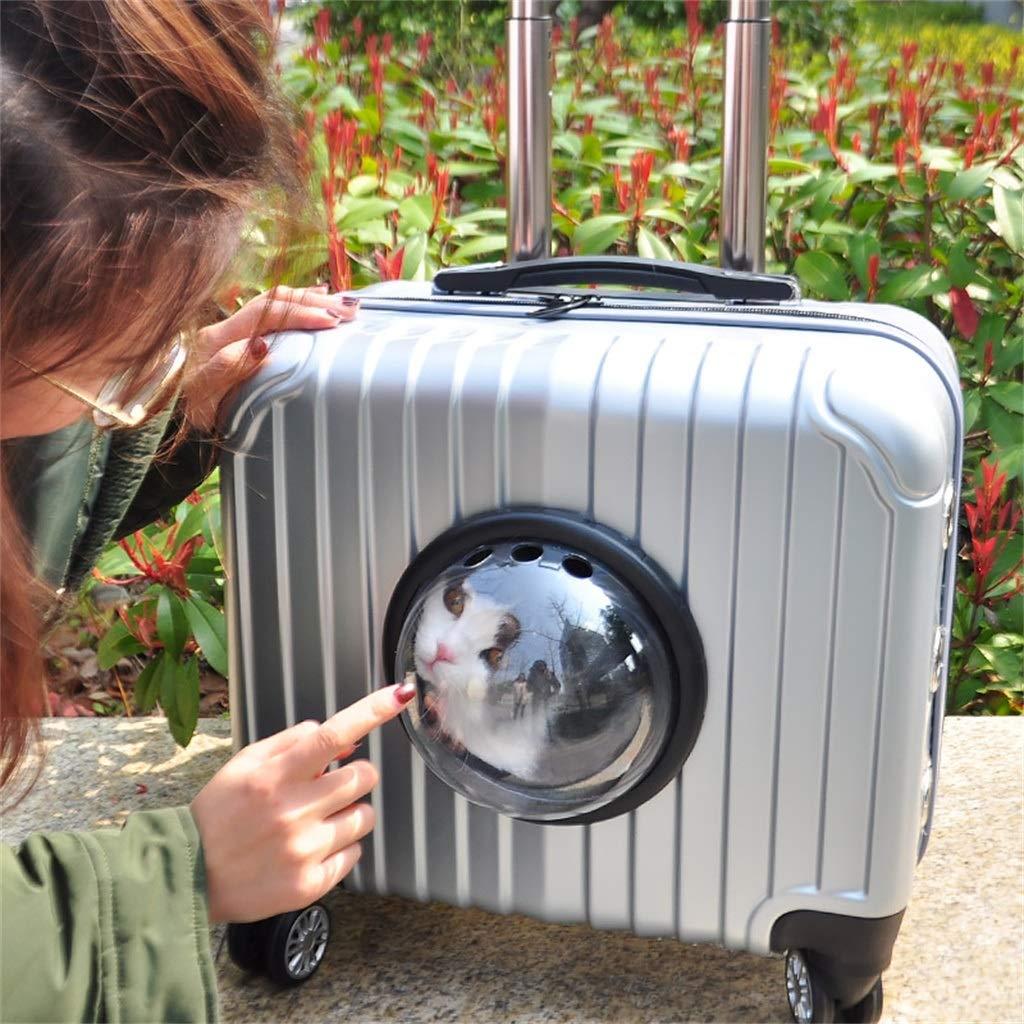 Carrito para Mascotas Carrier Case Transpirable Luxury Travel Bolsas para Mascotas (Mascotas de hasta 16 Libras) (33cmX39cmX22cm) Blanco: Amazon.es: Hogar