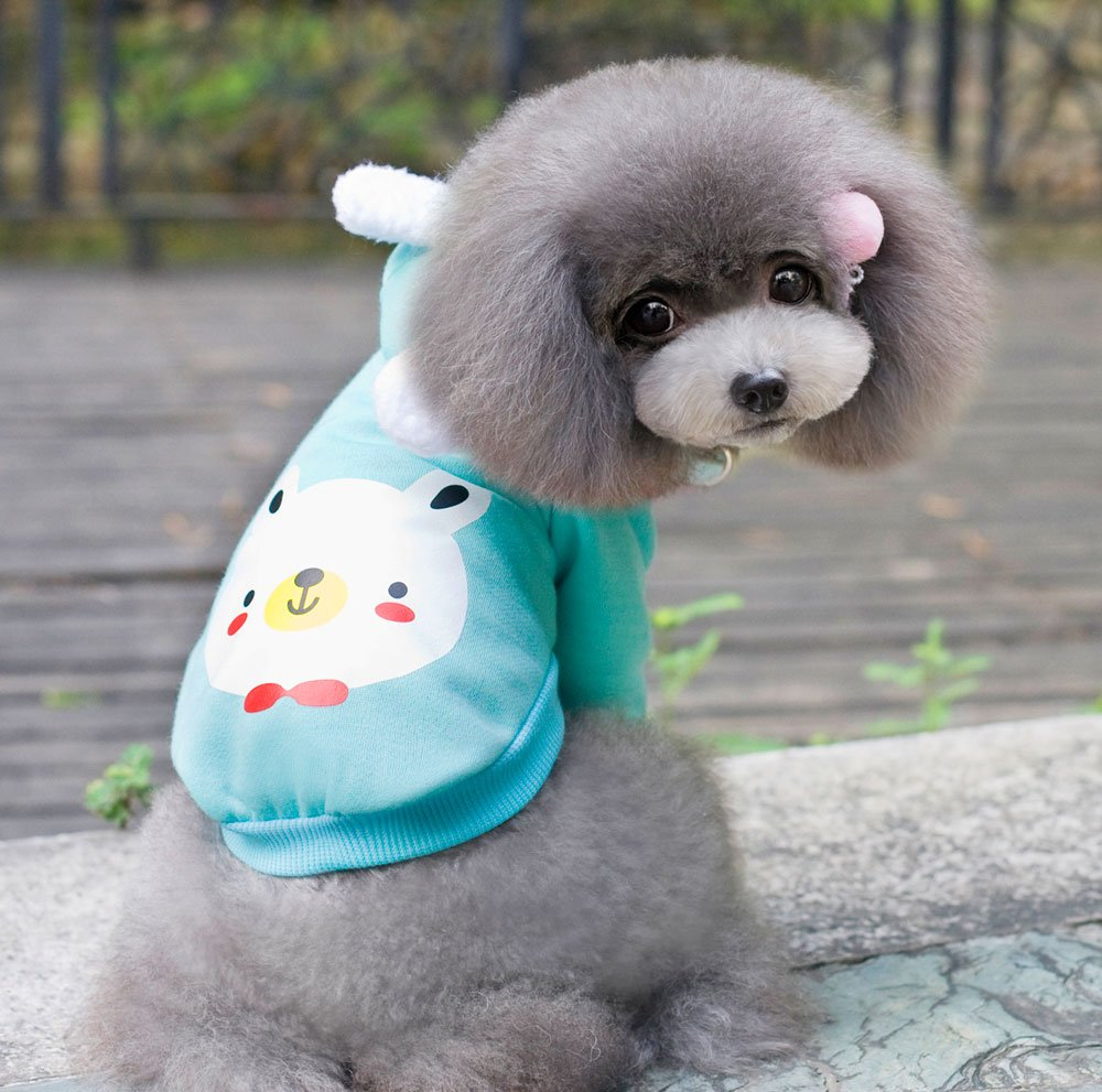 bluee XX-Large bluee XX-Large SMALLLEE_LUCKY_STORE Soft Cotton Cute Jumper Coat, bluee, XX-Large
