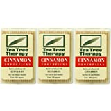 Tea Tree Therapy Toothpicks, Cinnamon, 100 Count (3-Pack)