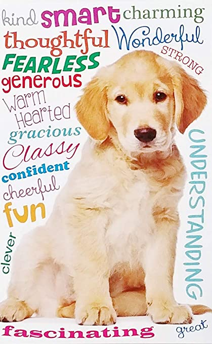 Thinking Of YOU On Your Birthday Greeting Card W Golden Retriever Puppy Dog Quot