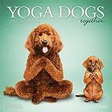 Yoga Dogs Together 2017 Square Plato