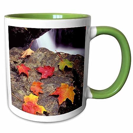 Mt Greylock -7 Jerry and Marcy Monkman Money Brook Falls 3dRose Autumn 11-Oz Ceramic Mug