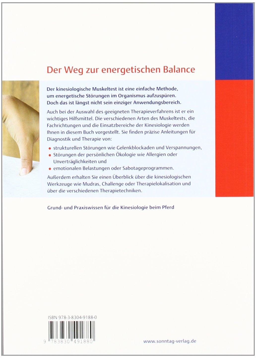 Fein Anatomie Muskeltest Bilder - Menschliche Anatomie Bilder ...