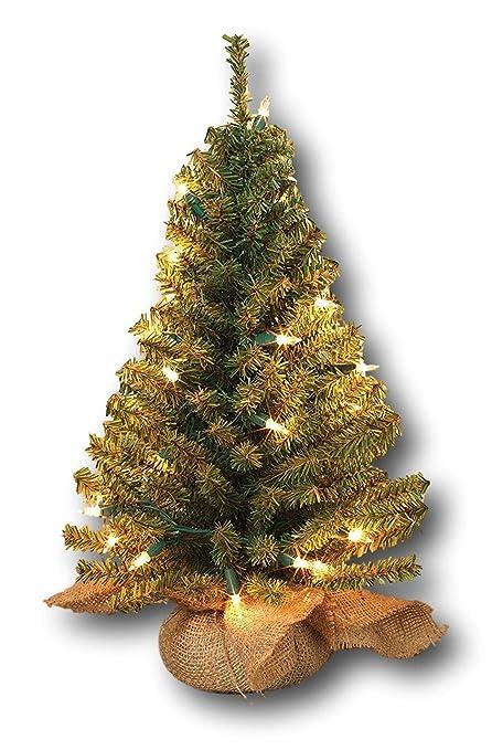 Gerson Pre-lit Artificial 18 Inch Pine Tree Burlap Sack Base Tabletop  Christmas Tree - Amazon.com: Gerson Pre-lit Artificial 18 Inch Pine Tree Burlap Sack