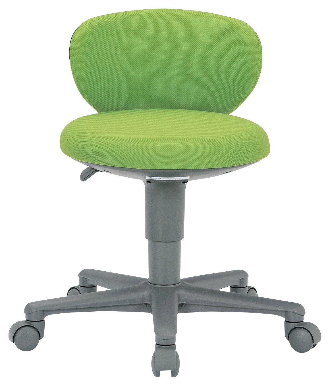 AICO 事務椅子 コンパクト背付きタイプ 丸いすデスクチェア OA-250 座W410 H610  FG3グレーGR B0150YTLIC FG3グレーGR  FG3グレーGR