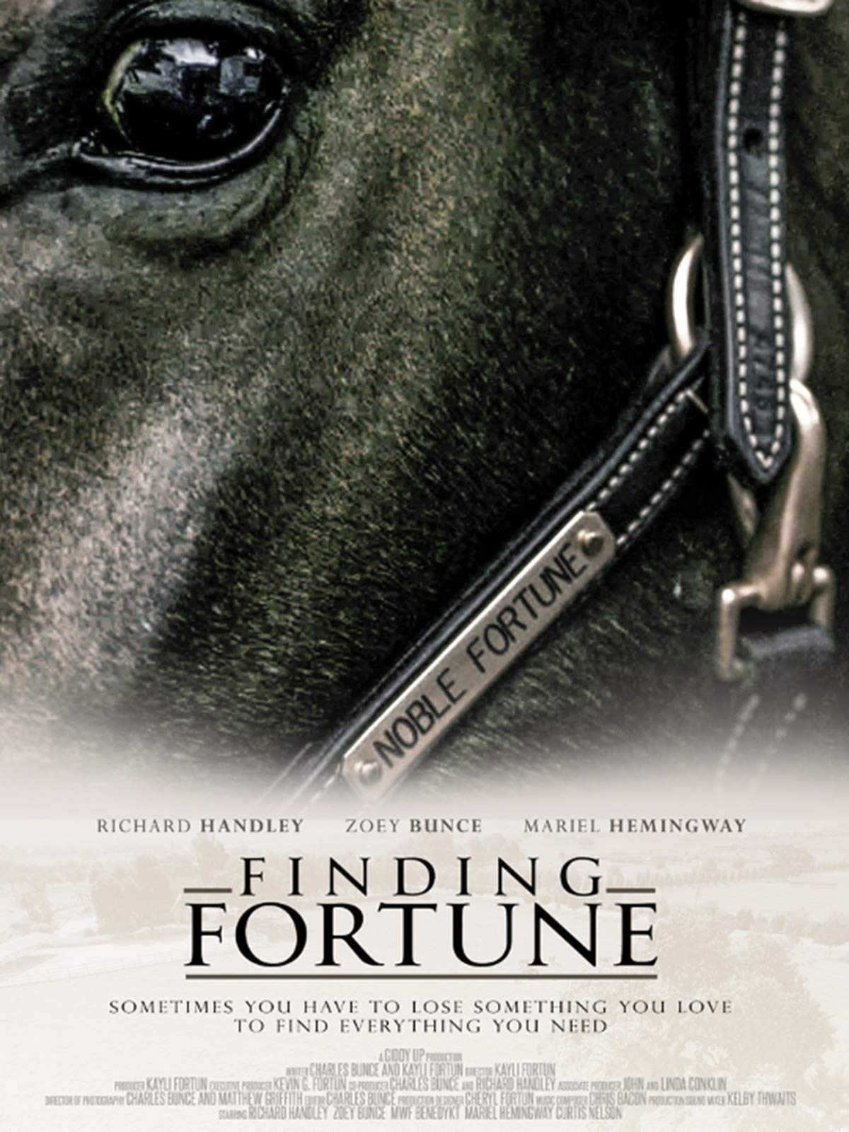 Finding Fortune on Amazon Prime Video UK