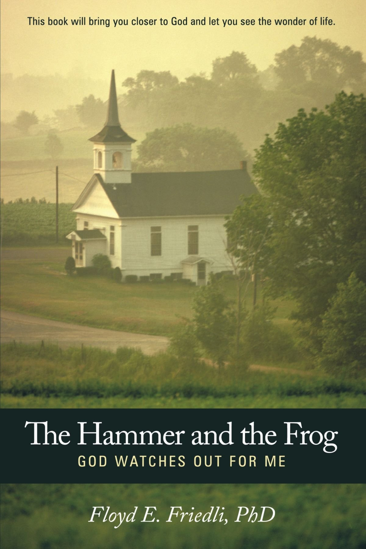 Read Online The Hammer and the Frog, God Watches Out For Me ebook