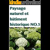 Paysage naturel et bâtiment historique NO.5 (French Edition)