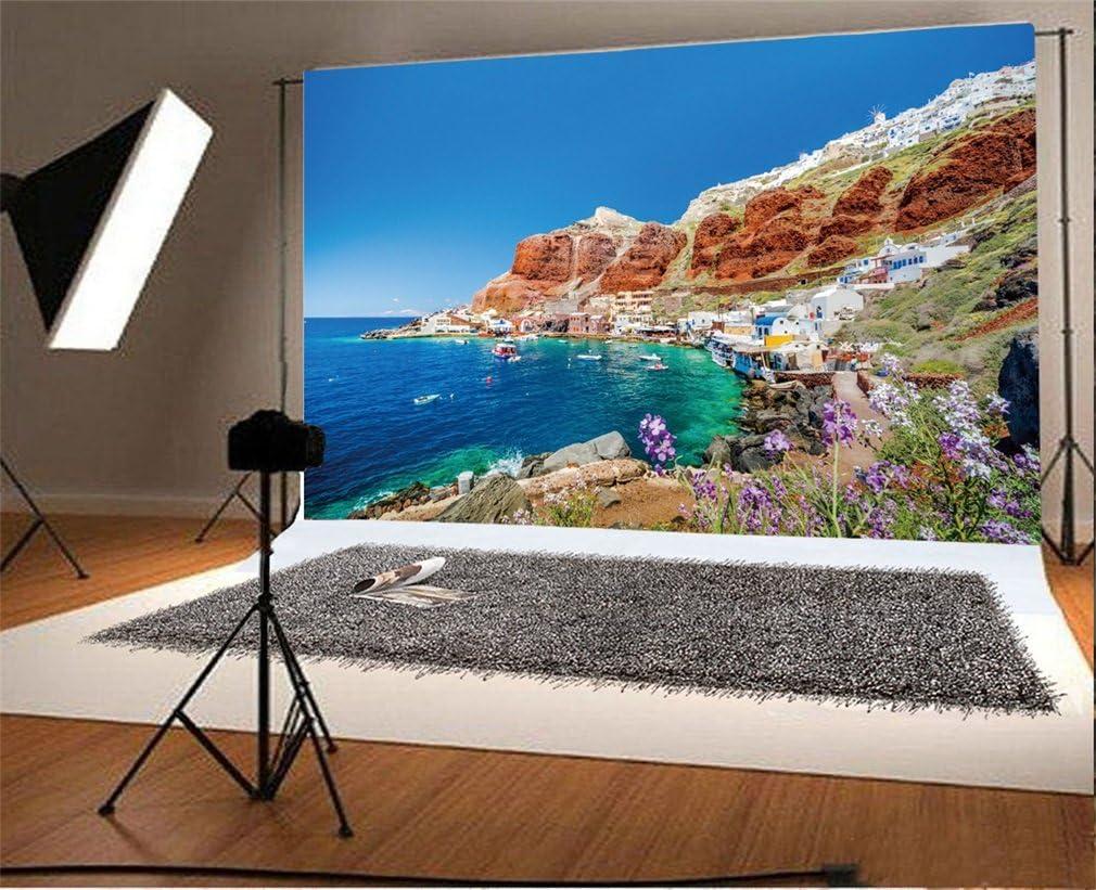 YongFoto 1,5x1m Vinilo Fondo de Fotografia Playa Antiguo Puerto de ...