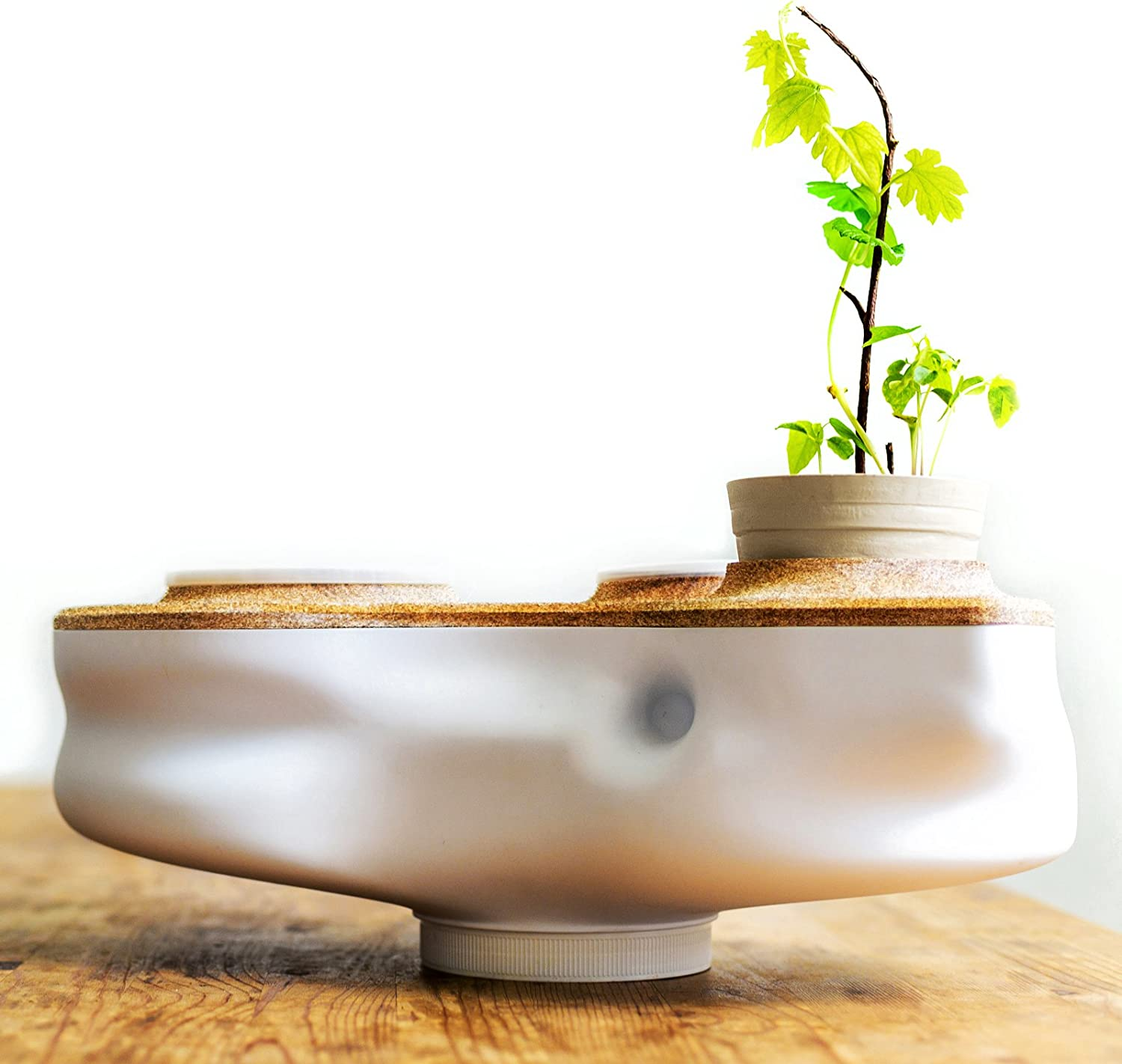 Biovessel - Eco Living Composter Powered by Food Waste