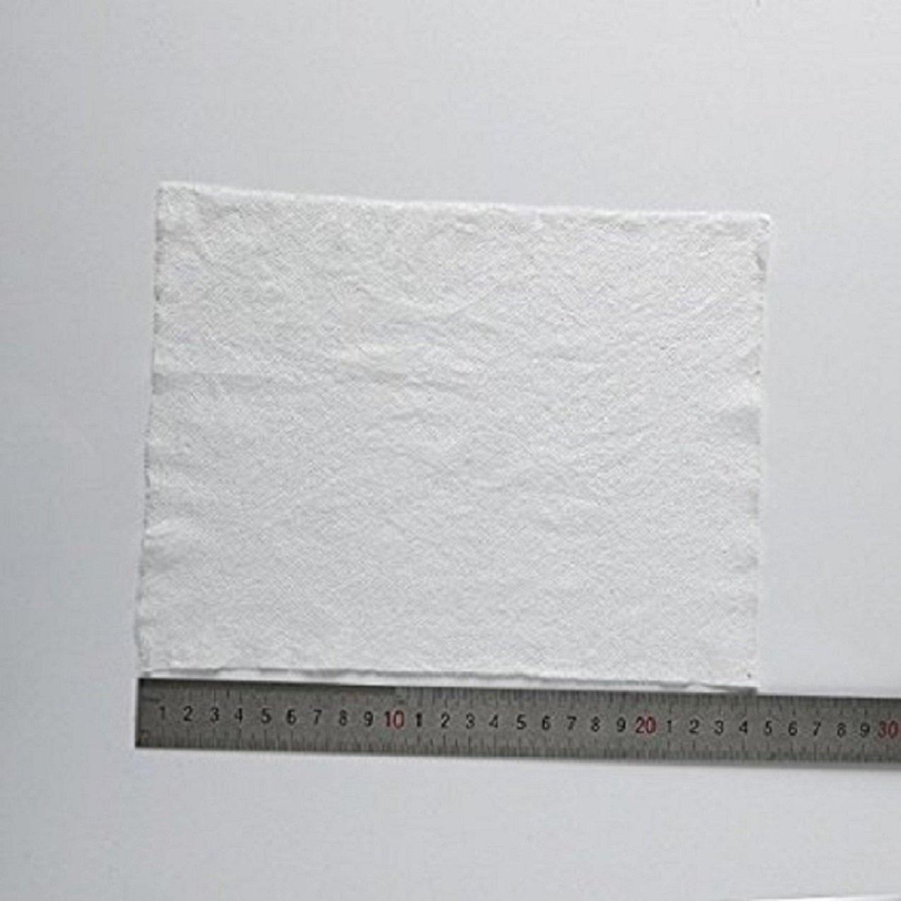 50 Piezas Mini Toallas Comprimidas Desechable Disponible del Algodón del Cuidado de la Cara al Aire Libre del Recorrido: Amazon.es: Bricolaje y herramientas