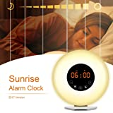 Amazon Price History for:AK1980 Alarm Clock with Wake-up Light Sunrise Simulation and FM Radio Function for Kids Teens Aged Sportsman Worker Heavy Sleepers