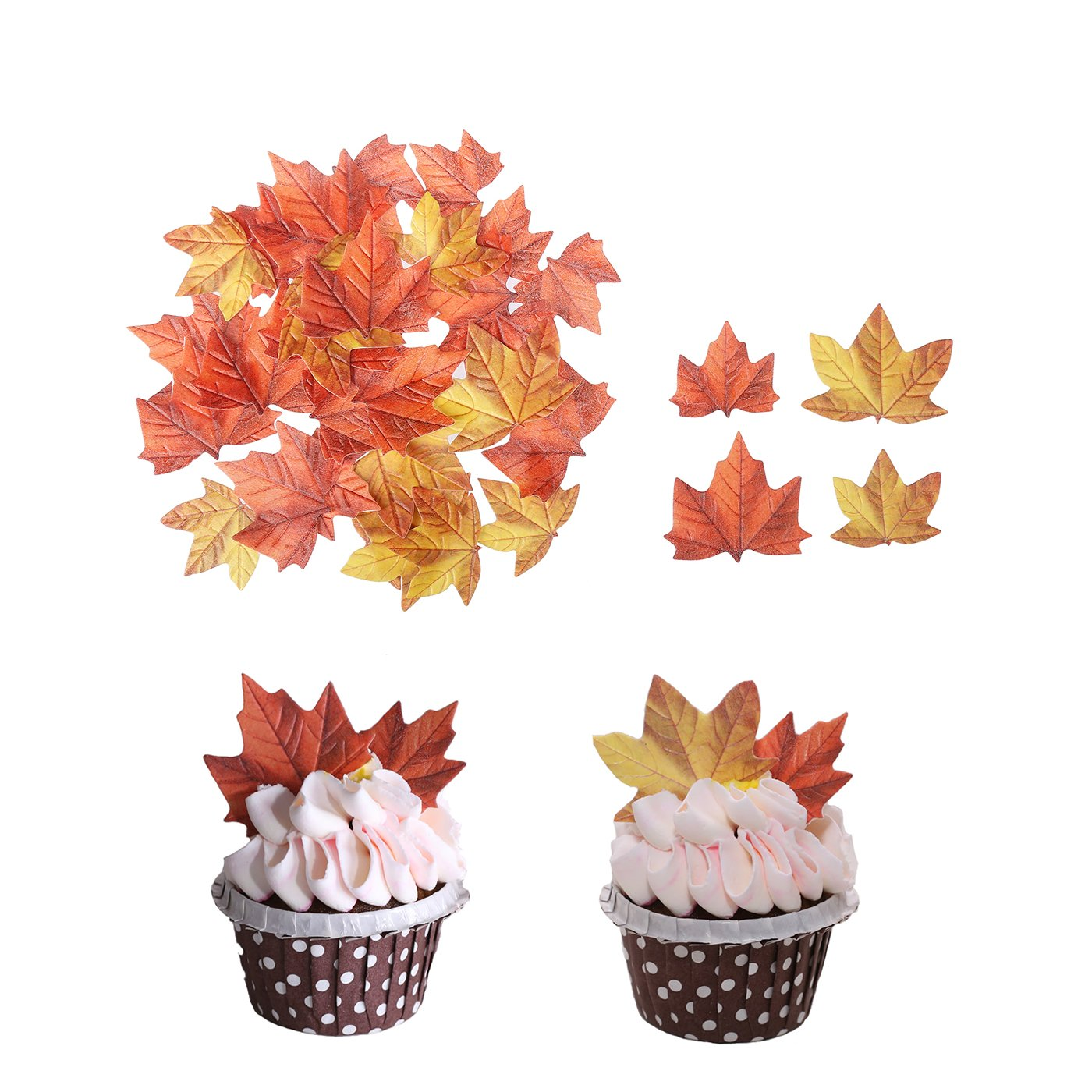 GEORLD Set of 48 Edible Fall Leaves Cake Decorations ...