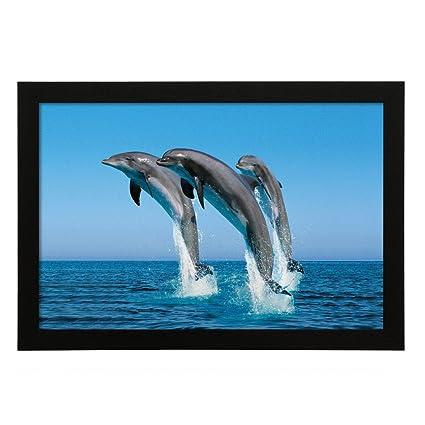Delight Dolphin Digital Printed UV Photo Frame Photo Frame: Amazon ...