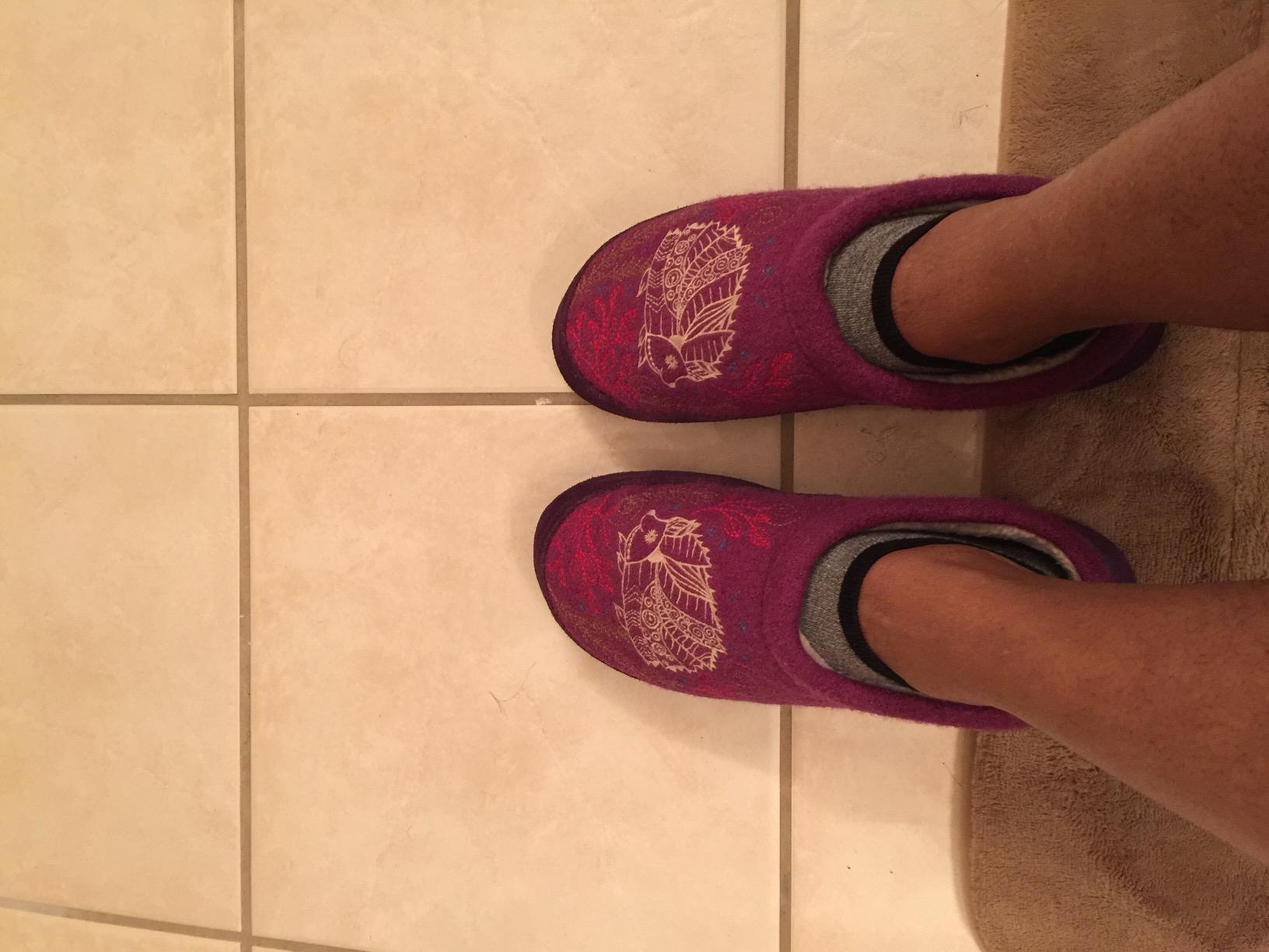 3aaf66777845 I ve been wearing the forest purple hedgehog slippers for 3 days and here s  my thoughts on them. They are nice and comfortable. I purchased the XL  9.5-10.5 ...