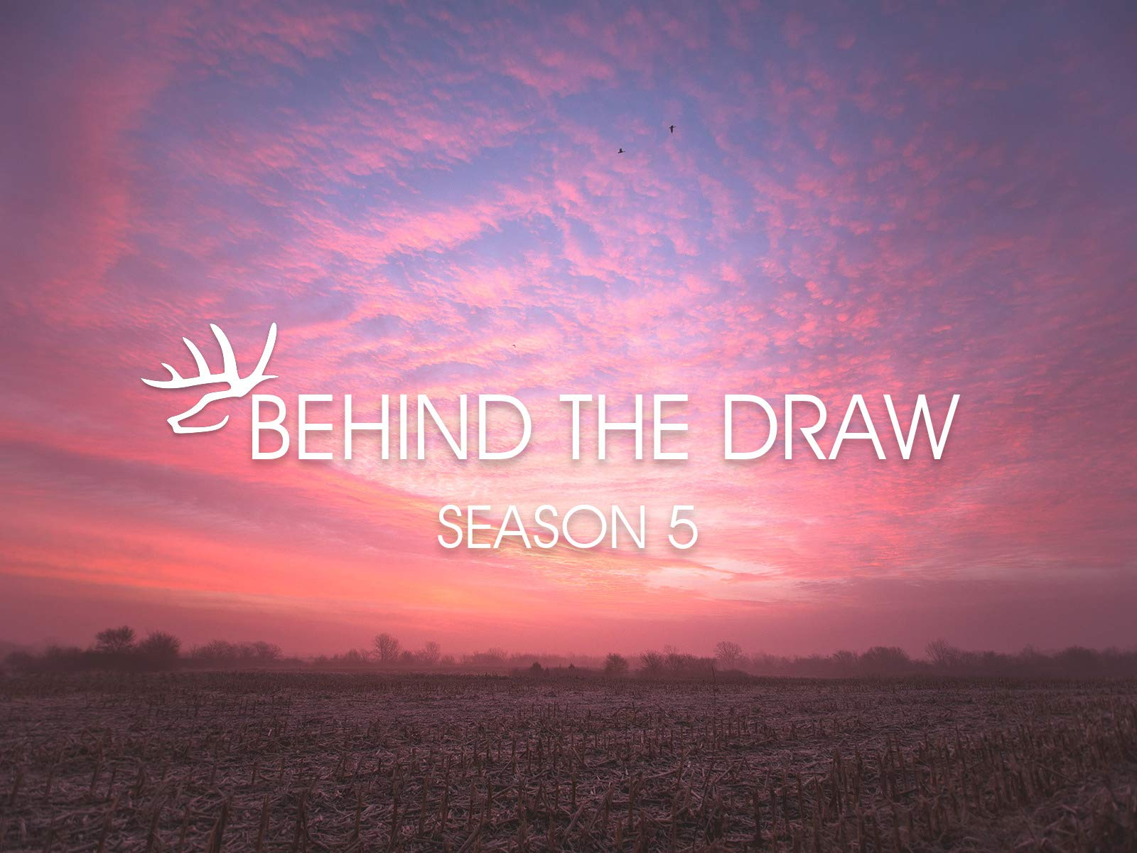 Behind The Draw