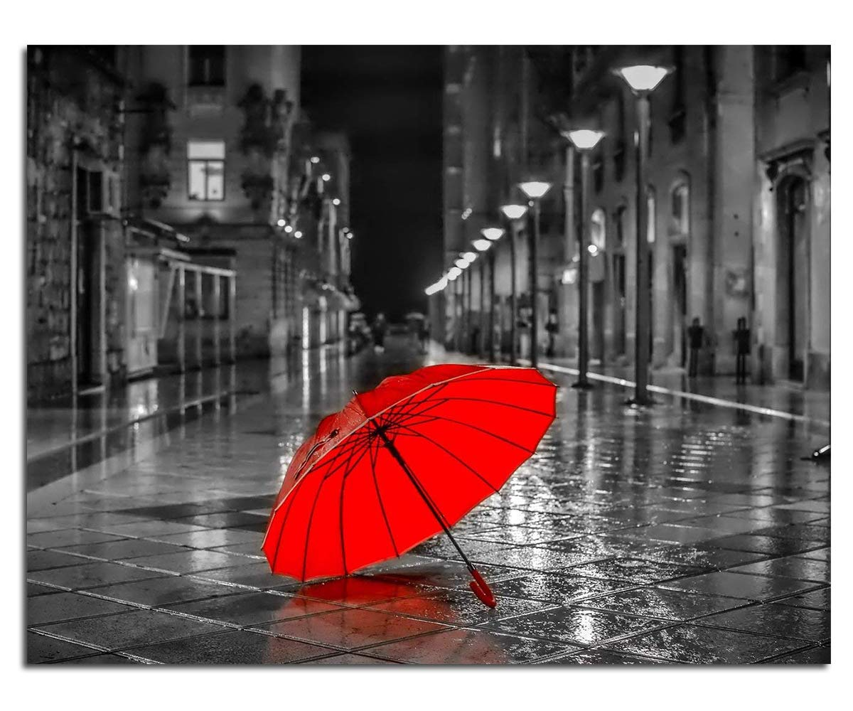 Blxecky 5D DIY Diamond Painting By Number Kits,Red umbrella(12X16inch/30X40CM)