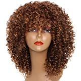 MISSWIG Synthetic Afro Curly Hair Wigs Brown Wig Short Curly Wigs for Black Women with Wig Cap