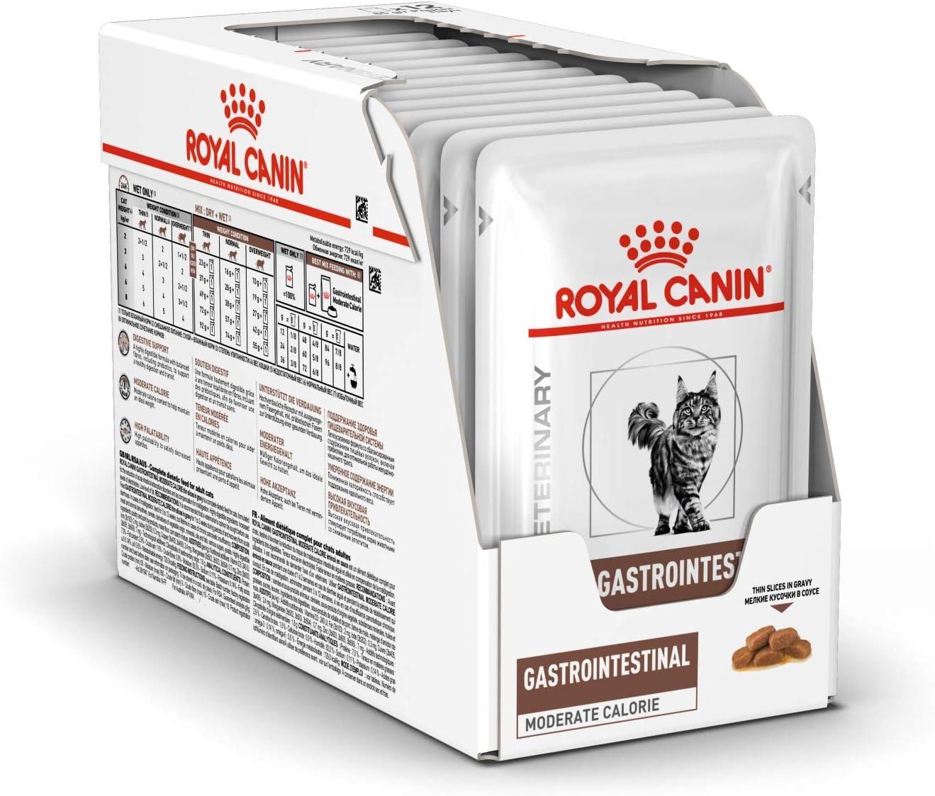 Royal Canin Gastro Intestinal, Alimento Húmedo para Gato, Pack de 12 x 100 g: Amazon.es: Productos para mascotas