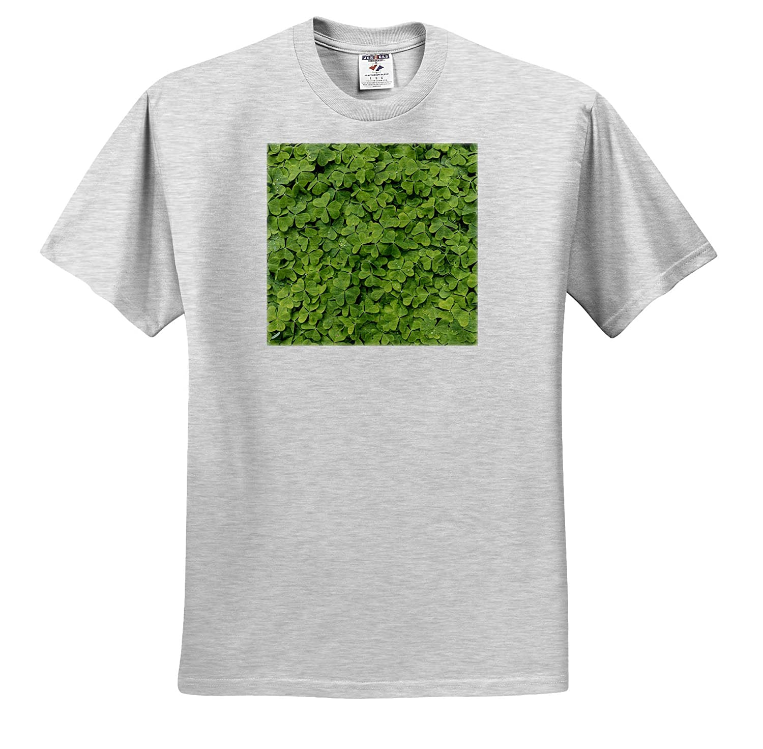 ts/_315128 Natural Patterns Close-up of Dew on Oxalis in Spring - Adult T-Shirt XL 3dRose Danita Delimont