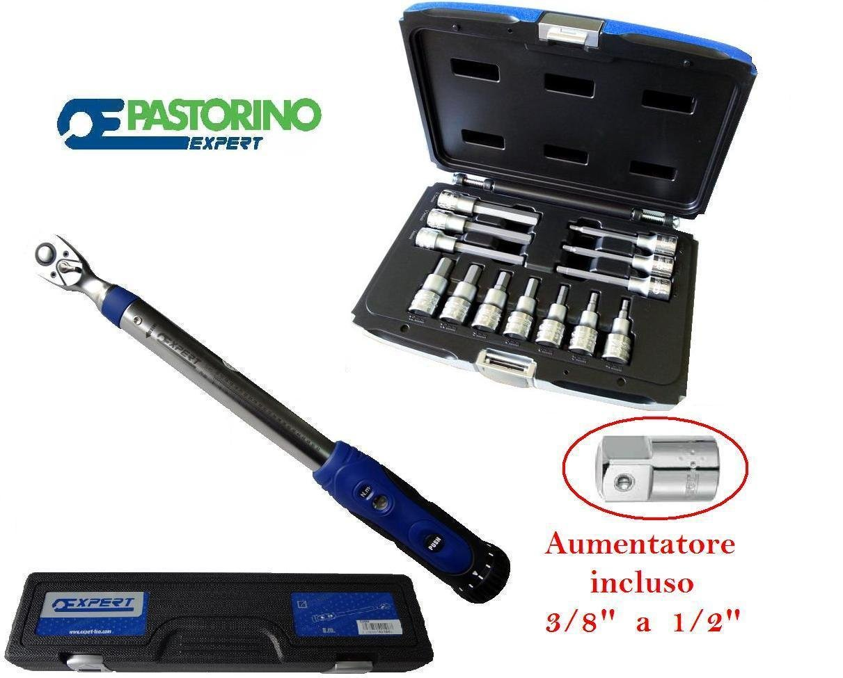 PASTORINO EXPERT 'Drehmomentschlüssel 10 – 50 Nm 3 8 8 8 Piu 764 1 2 E13 B01HZPGURE   Deutschland Store  e9f0c8