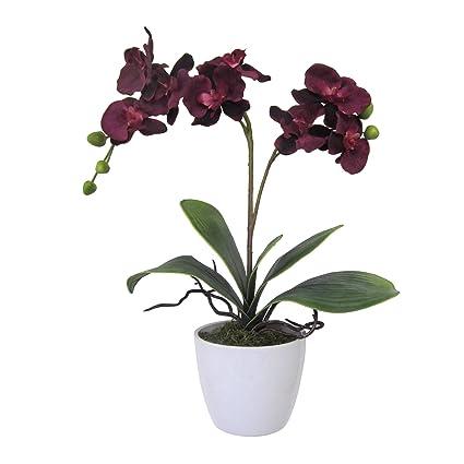 Flores artificiales, vino o burdeos orquídea Phalaenopsis incluidos blanco Jarrón de cerámica, 22 &quot