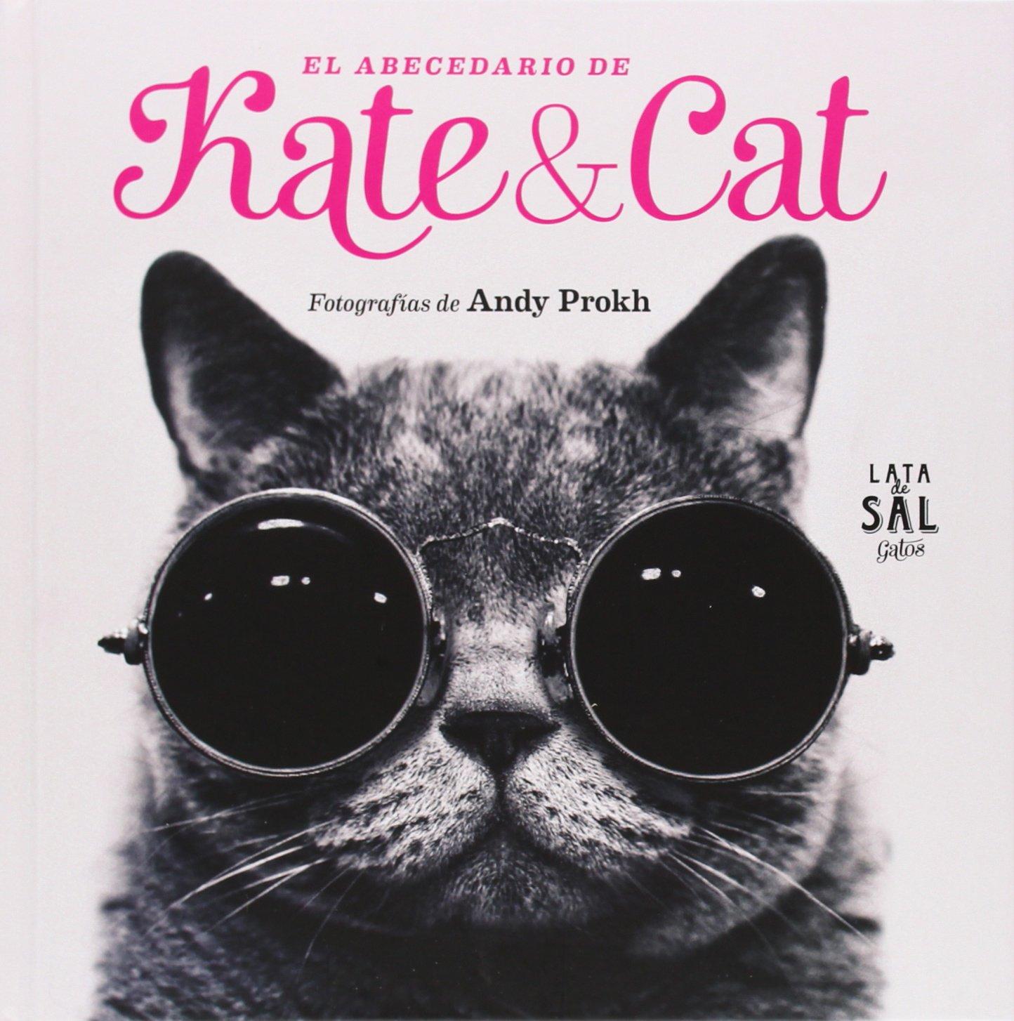 El abecedario de Kate&Cat (Spanish) Hardcover – 2014