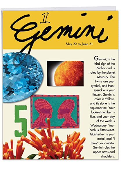 Amazoncom J9444 Gemini Astrological Sign Birthday Card Famous