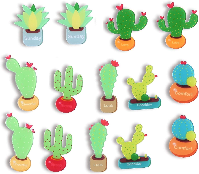 Cactus Magnets Refrigerator Magnet Fridge Magnet Cactus Kitchen Magnets Fun