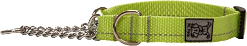 RC Pet Primary Collection Training Martingale Dog Collar