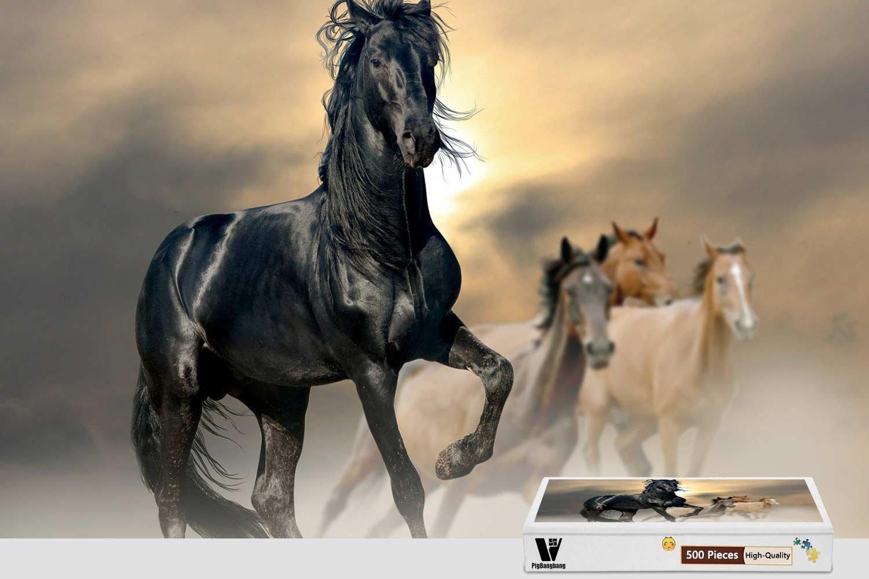 注目のブランド pigbangbang、20.6 X 15.1インチ D、ハンドメイドintellectivゲームプレミアム木製DIY接着のJigsaw Nice Painting – X Horse Horses Horse D – 500ピースジグソーパズル B07CSGWFS5, DressLine:40c83e7b --- a0267596.xsph.ru