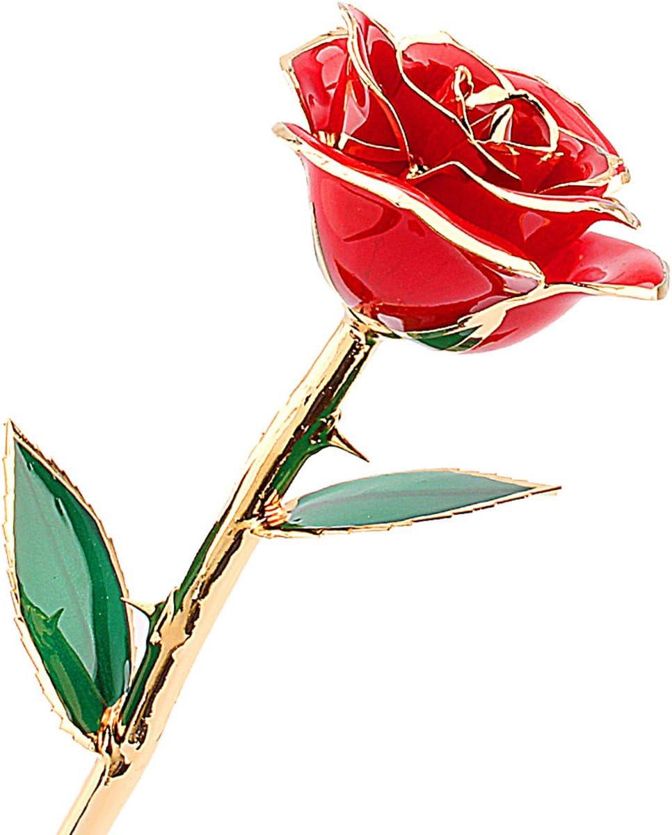 zjchao Por inmersión en oro rosa, regalos de San Valentín para ella ZJchao 24 quilates de oro sumergida real flores, regalo del amor de la novia de cumpleaños de Navidad Un