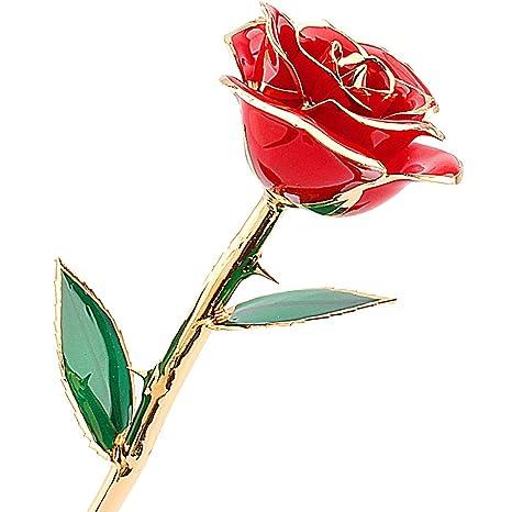 Rosa Oro 24 Carati Tuffato Reale Rosa Rossa Fiore Regali Di San