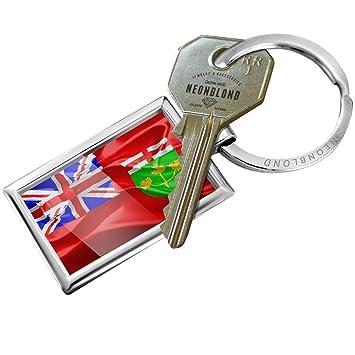 Amazon com: NEONBLOND Keychain Ontario 3D Flag region