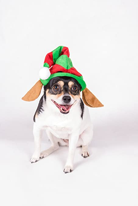 4a9597b40dcaa clever creations puppy dog christmas elf hat one size fits most red and  green