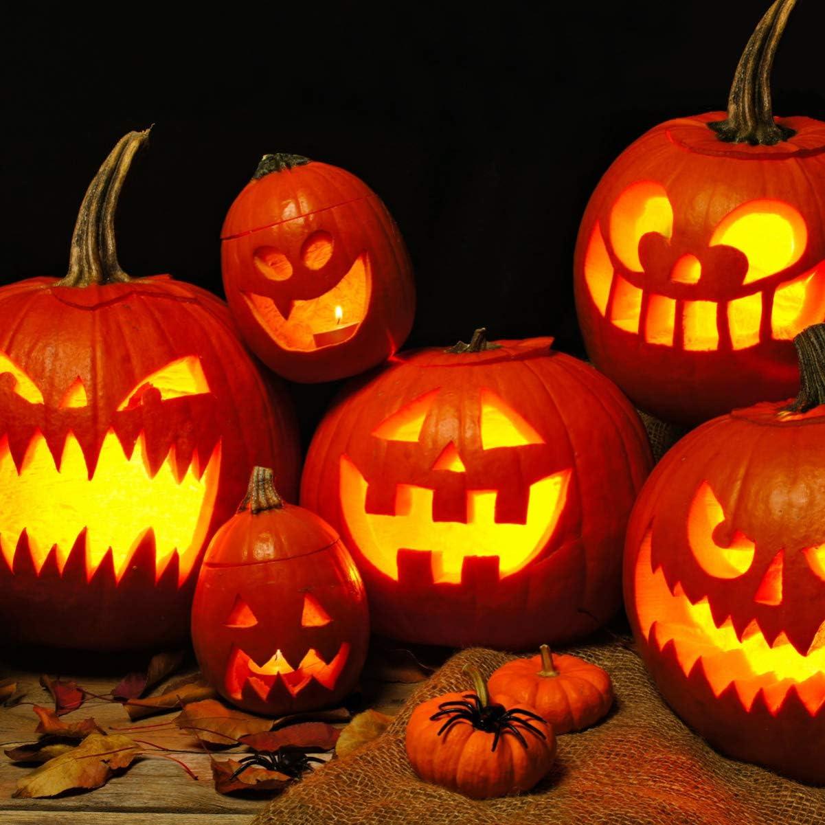 Halloween Pumpkin Carving Kit Stainless Steel Jack O Lantern Making Tools with 1PC Marker Pen 14PCS