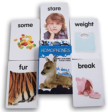 23 Laminated Preschool Homophones Flashcards.
