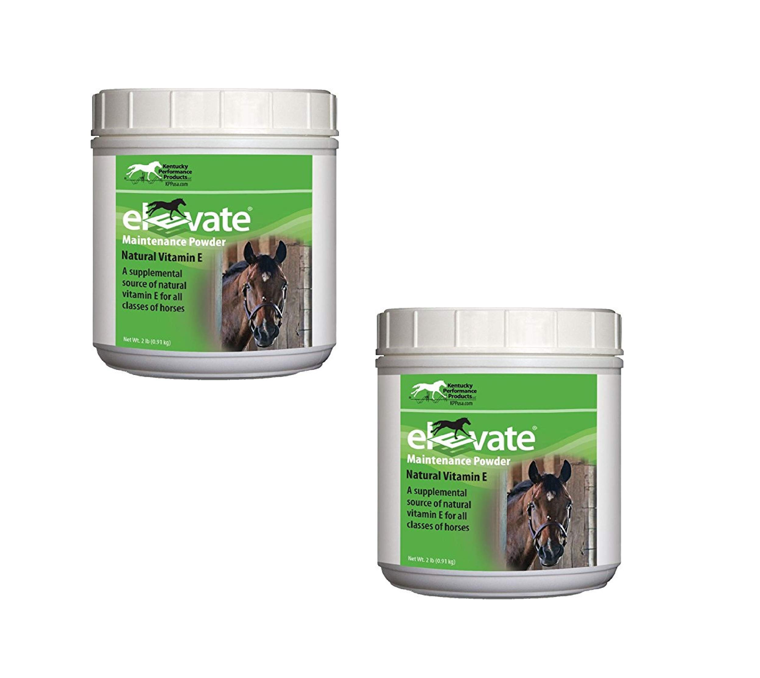 Kentucky Performance Prod 044097 Elevate Maintenance Powder Supplement for Horses, 2 lb (2 Pack)